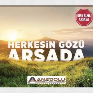 Anadolu İnşaat Emlak Otomotiv